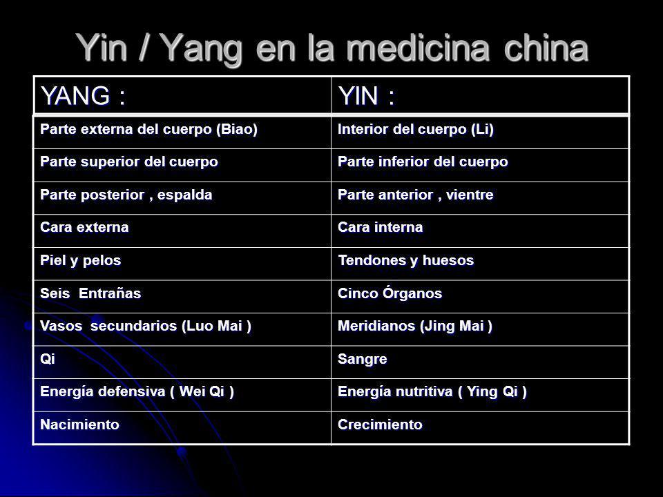 Yin / Yang en la medicina china Parte externa del cuerpo (Biao) Interior del cuerpo (Li) Parte superior del cuerpo Parte inferior del cuerpo Parte pos