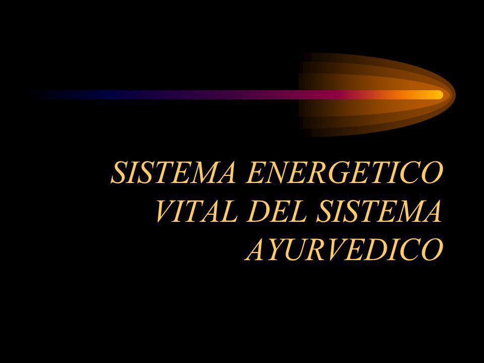 SISTEMA ENERGETICO VITAL DEL SISTEMA AYURVEDICO