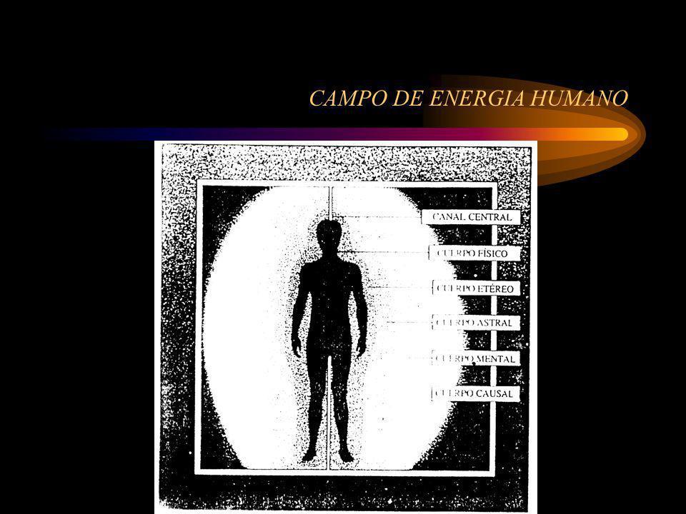 SIGUE CAMPO ENERGETICO El campo de energia humano esta compuesto por cuerpos super puestos de energia sutil sobre la forma fisica.