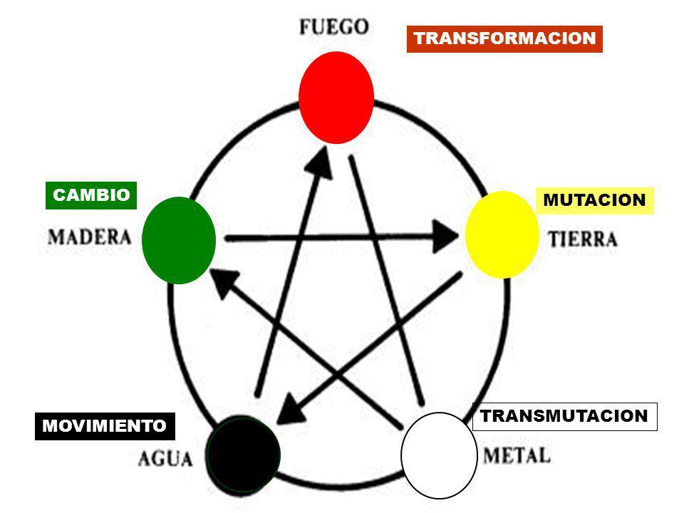 MOVIMIENTO CAMBIO TRANSFORMACION MUTACION TRANSMUTACION