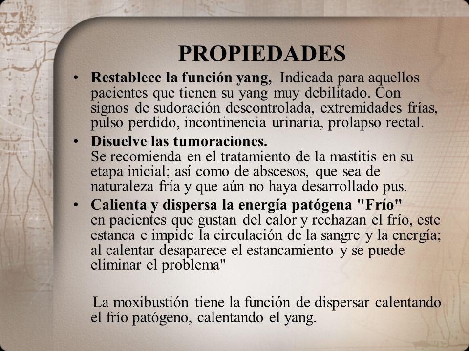 PROPIEDADES Restablece la función yang, Indicada para aquellos pacientes que tienen su yang muy debilitado. Con signos de sudoración descontrolada, ex