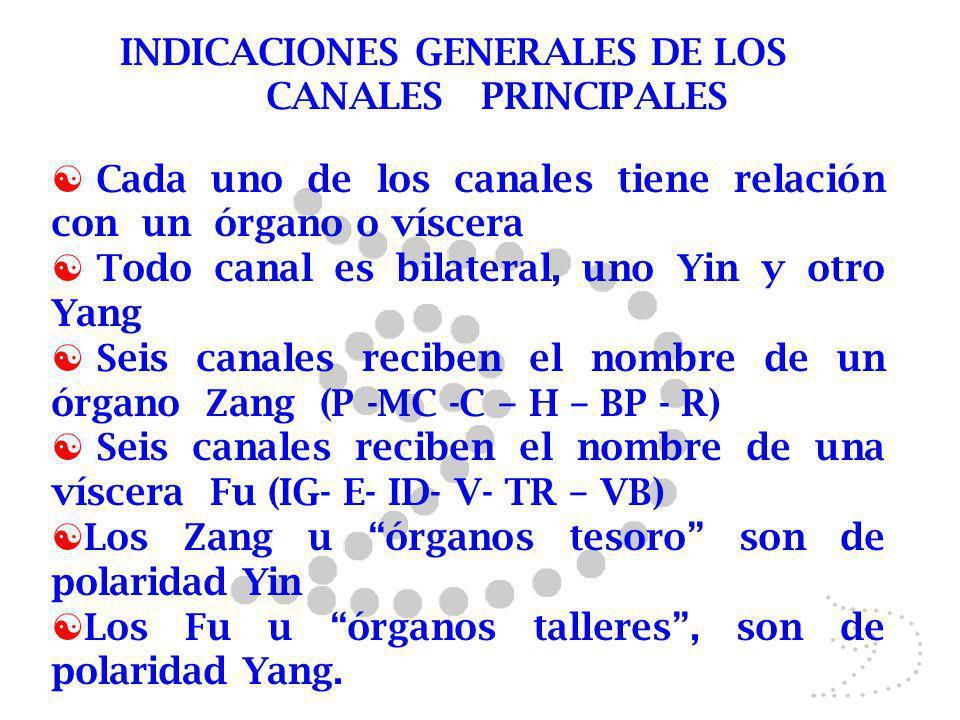INDICACIONES GENERALES DE LOS CANALES PRINCIPALES Cada uno de los canales tiene relación con un órgano o víscera Todo canal es bilateral, uno Yin y ot