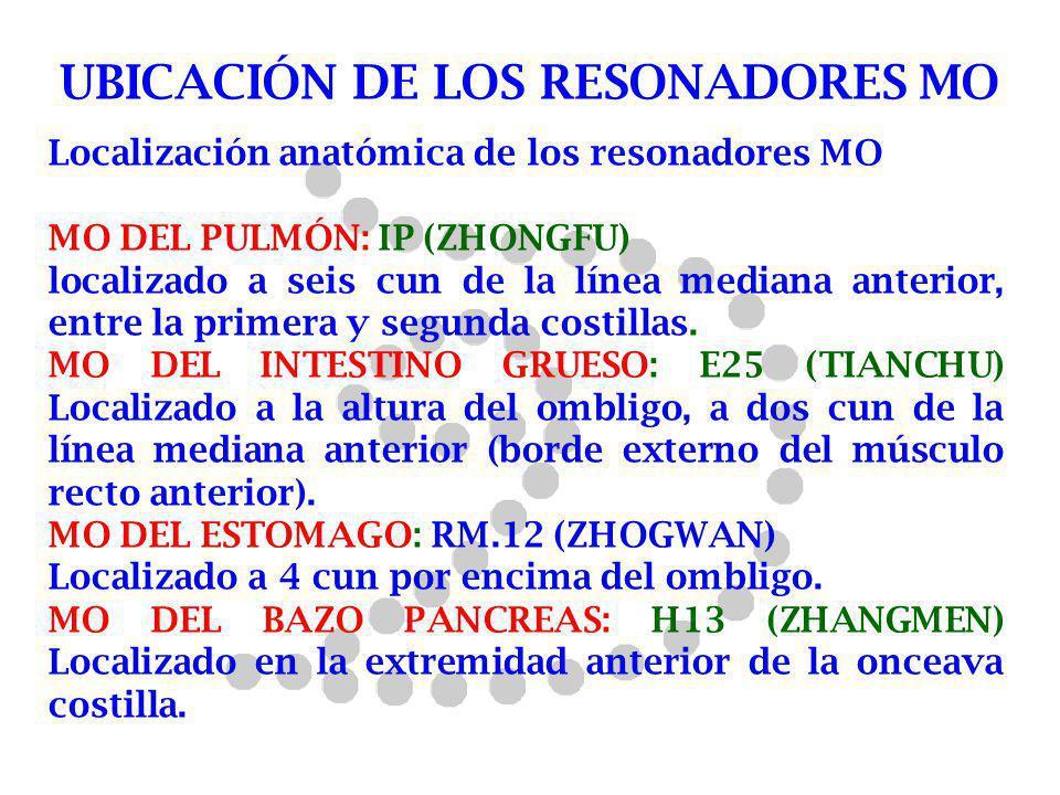 Localización anatómica de los resonadores MO MO DEL PULMÓN: IP (ZHONGFU) localizado a seis cun de la línea mediana anterior, entre la primera y segund