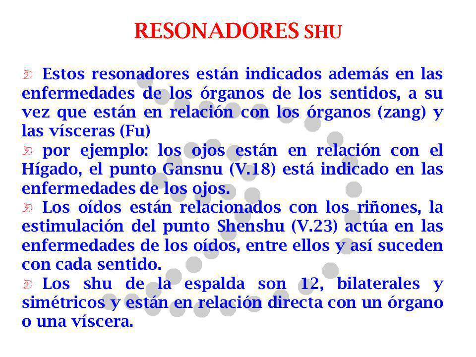 RESONADORES SHU Estos resonadores están indicados además en las enfermedades de los órganos de los sentidos, a su vez que están en relación con los ór