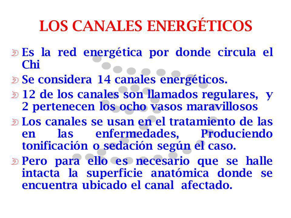 LOS CANALES ENERGÉTICOS Es la red energética por donde circula el Chi Se considera 14 canales energéticos. 12 de los canales son llamados regulares, y