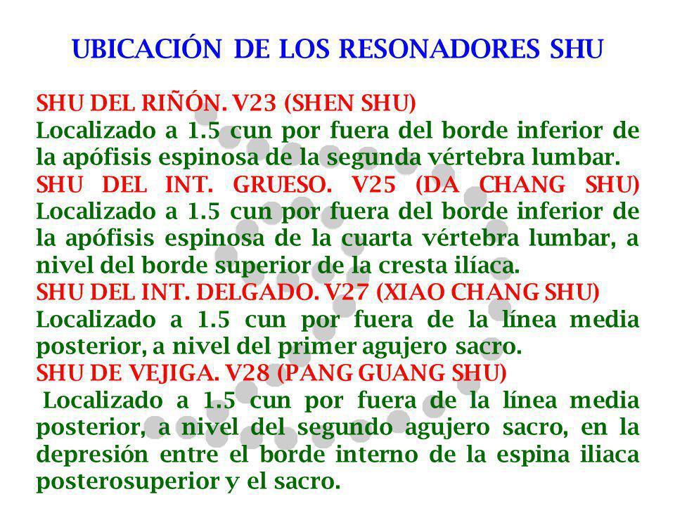 UBICACIÓN DE LOS RESONADORES SHU SHU DEL RIÑÓN. V23 (SHEN SHU) Localizado a 1.5 cun por fuera del borde inferior de la apófisis espinosa de la segunda