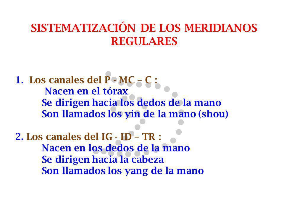 SISTEMATIZACIÓN DE LOS MERIDIANOS REGULARES 1. Los canales del P - MC – C : Nacen en el tórax Se dirigen hacia los dedos de la mano Son llamados los y