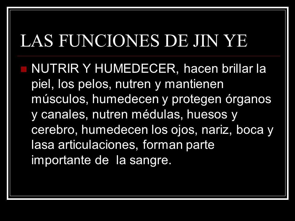 LAS FUNCIONES DE JIN YE NUTRIR Y HUMEDECER, hacen brillar la piel, los pelos, nutren y mantienen músculos, humedecen y protegen órganos y canales, nut