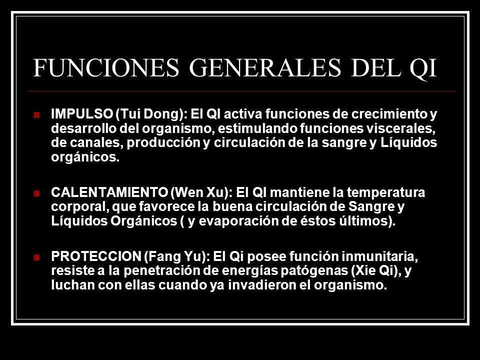 FUNCIONES GENERALES DEL QI IMPULSO (Tui Dong): El QI activa funciones de crecimiento y desarrollo del organismo, estimulando funciones viscerales, de