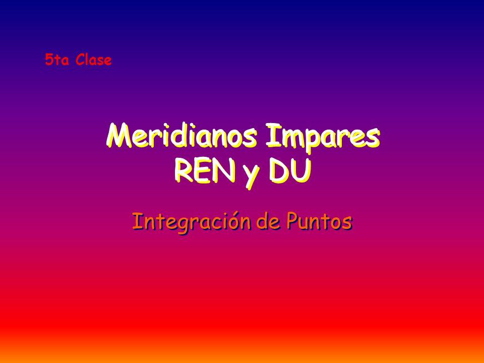 Meridianos Impares REN y DU Integración de Puntos 5ta Clase