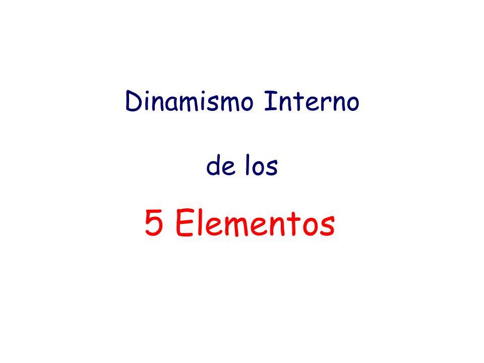 Dinamismo Interno de los 5 Elementos