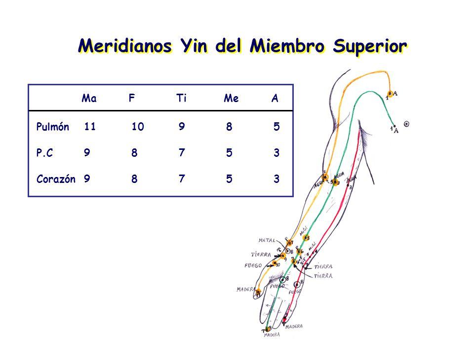 Meridianos Yin del Miembro Superior MaFTiMeA Pulmón1110985 P.C98753 Corazón98753