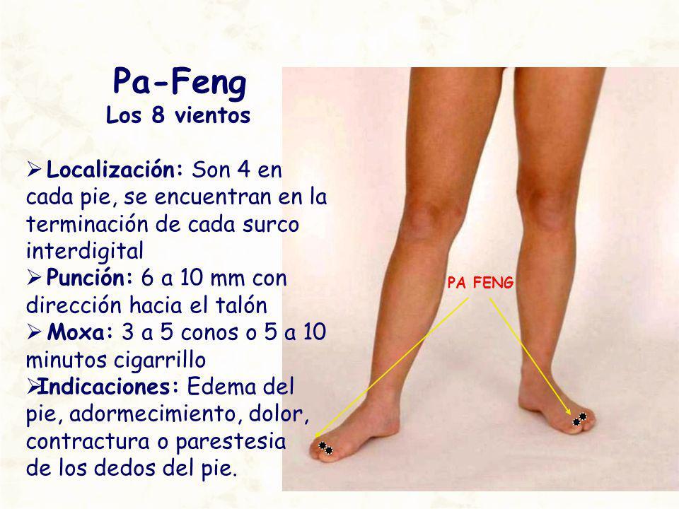 PA FENG Pa-Feng Los 8 vientos Localización: Son 4 en cada pie, se encuentran en la terminación de cada surco interdigital Punción: 6 a 10 mm con direc