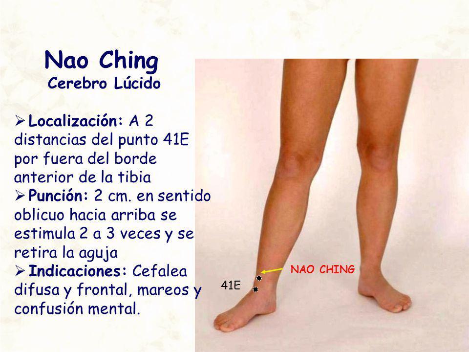 NAO CHING 41E Nao Ching Cerebro Lúcido Localización: A 2 distancias del punto 41E por fuera del borde anterior de la tibia Punción: 2 cm. en sentido o