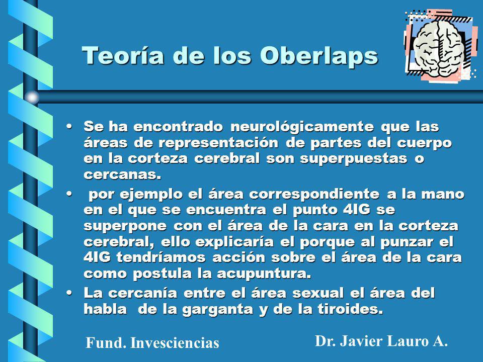 Teoría de los Oberlaps Se ha encontrado neurológicamente que las áreas de representación de partes del cuerpo en la corteza cerebral son superpuestas o cercanas.Se ha encontrado neurológicamente que las áreas de representación de partes del cuerpo en la corteza cerebral son superpuestas o cercanas.