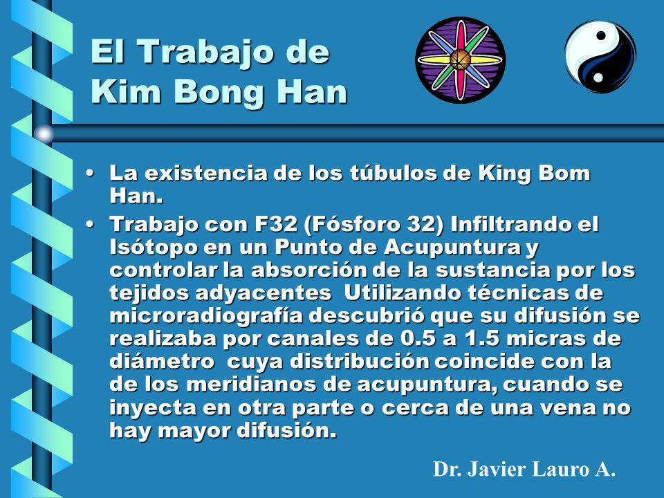 El Trabajo de Kim Bong Han La existencia de los túbulos de King Bom Han.La existencia de los túbulos de King Bom Han.