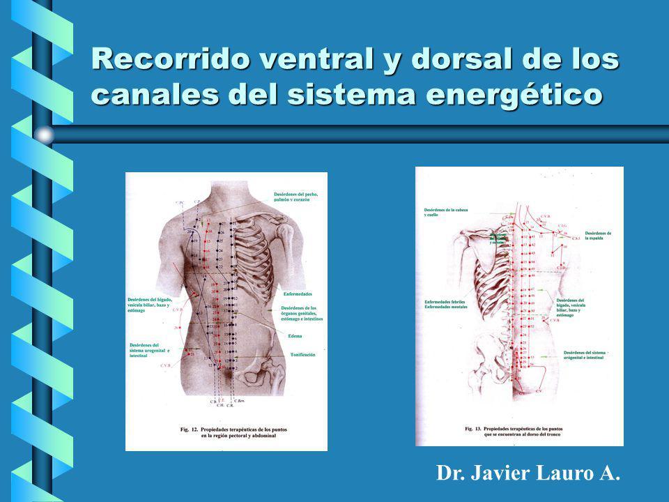 Recorrido ventral y dorsal de los canales del sistema energético Dr. Javier Lauro A.
