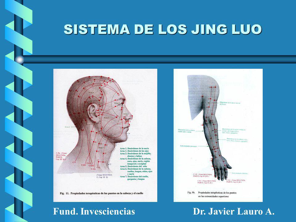SISTEMA DE LOS JING LUO Fund. InvescienciasDr. Javier Lauro A.