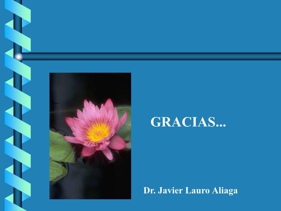GRACIAS... Dr. Javier Lauro Aliaga