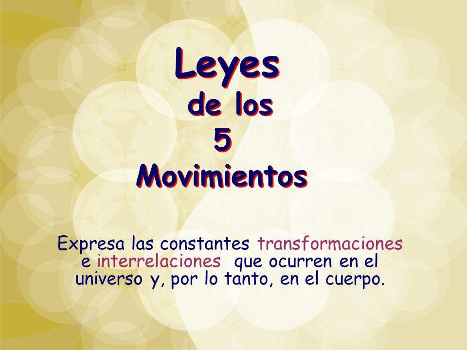 Leyes de los 5 Movimientos Expresa las constantes transformaciones e interrelaciones que ocurren en el universo y, por lo tanto, en el cuerpo.
