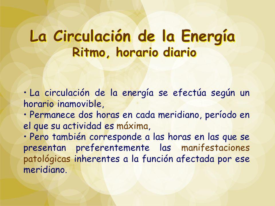 La Circulación de la Energía Ritmo, horario diario La Circulación de la Energía Ritmo, horario diario La circulación de la energía se efectúa según un