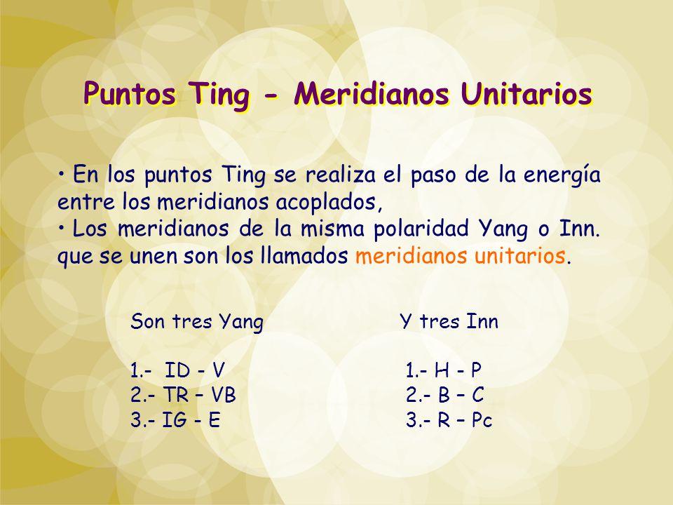 En los puntos Ting se realiza el paso de la energía entre los meridianos acoplados, Los meridianos de la misma polaridad Yang o Inn. que se unen son l