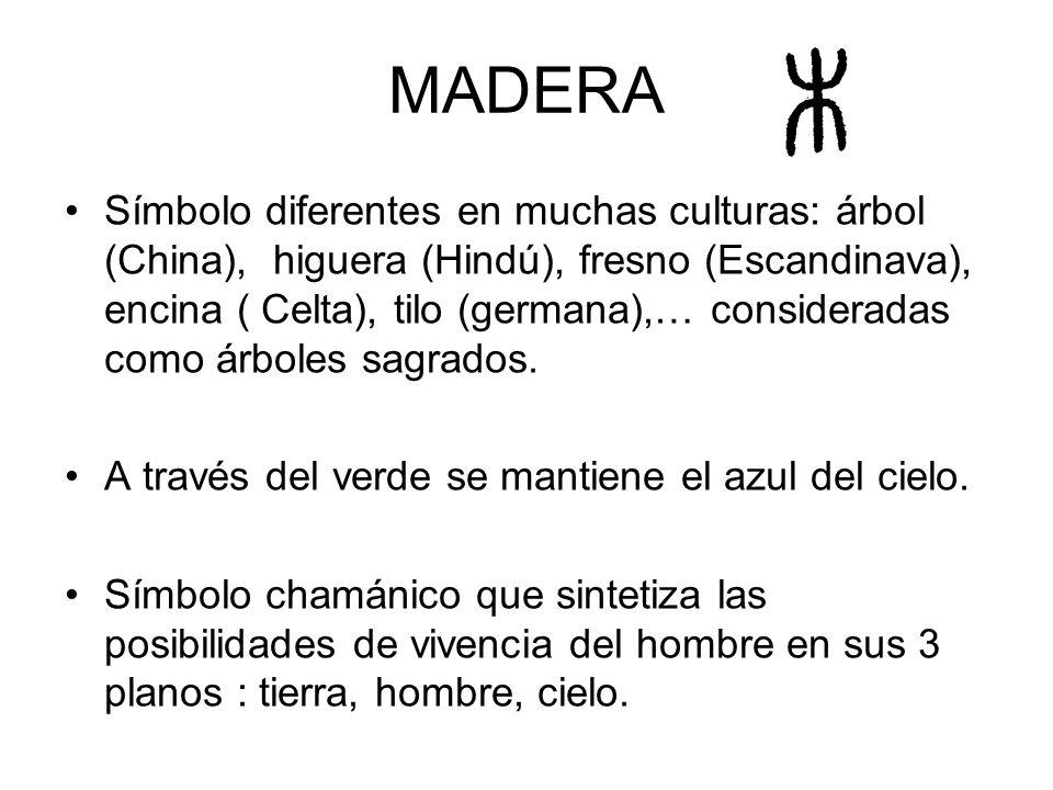 MADERA Símbolo diferentes en muchas culturas: árbol (China), higuera (Hindú), fresno (Escandinava), encina ( Celta), tilo (germana),… consideradas com