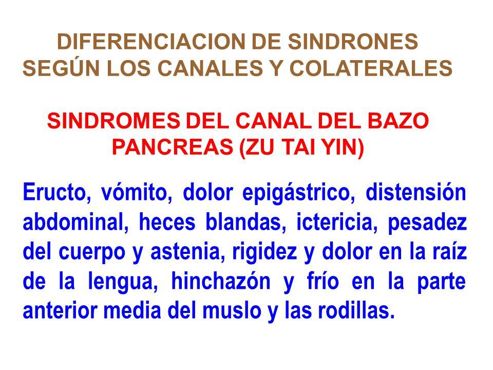 DIFERENCIACION DE SINDRONES SEGÚN LOS CANALES Y COLATERALES SINDROMES DEL CANAL DEL BAZO PANCREAS (ZU TAI YIN) Eructo, vómito, dolor epigástrico, dist
