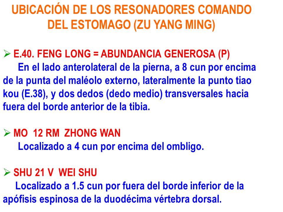 UBICACIÓN DE LOS RESONADORES COMANDO DEL ESTOMAGO (ZU YANG MING) E.40. FENG LONG = ABUNDANCIA GENEROSA (P) En el lado anterolateral de la pierna, a 8
