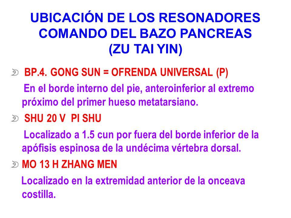 BP.4. GONG SUN = OFRENDA UNIVERSAL (P) En el borde interno del pie, anteroinferior al extremo próximo del primer hueso metatarsiano. SHU 20 V PI SHU L