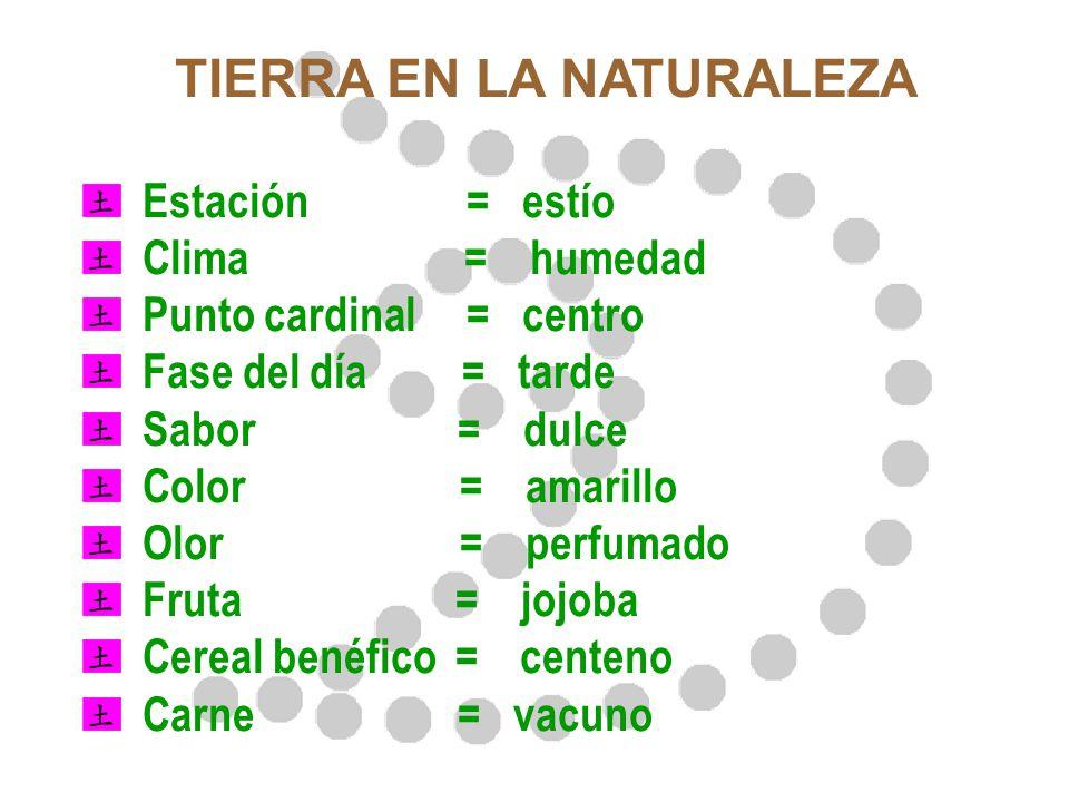 TIERRA EN LA NATURALEZA Estación = estío Clima = humedad Punto cardinal = centro Fase del día = tarde Sabor = dulce Color = amarillo Olor = perfumado