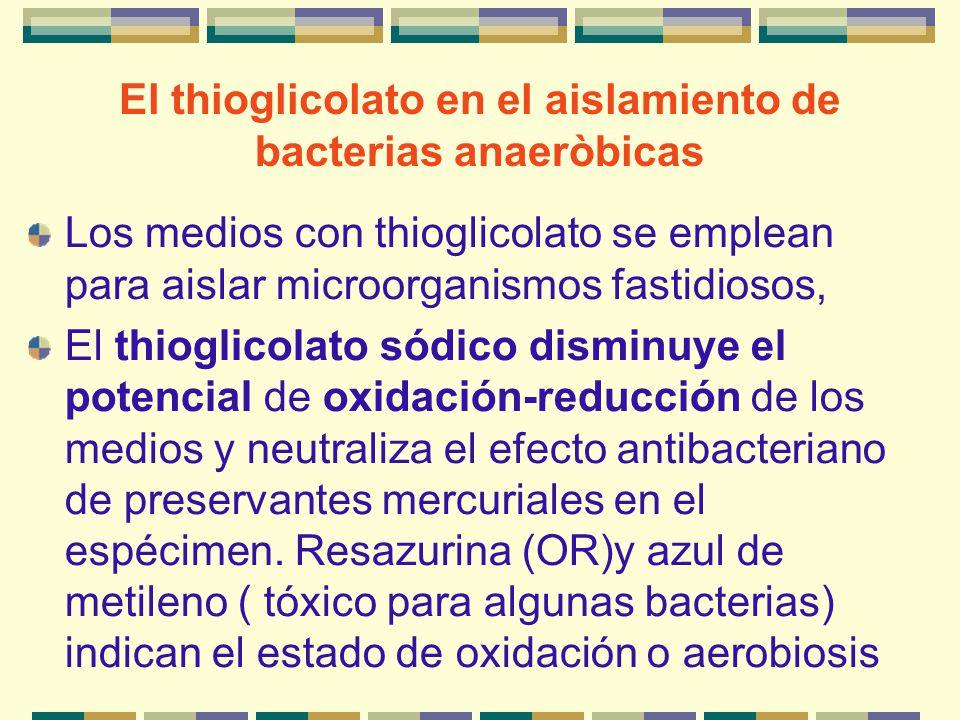 El thioglicolato en el aislamiento de bacterias anaeròbicas Los medios con thioglicolato se emplean para aislar microorganismos fastidiosos, El thiogl
