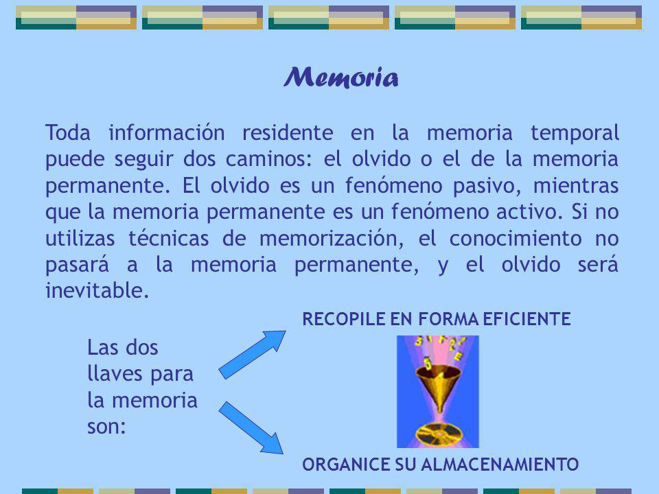 Toda información residente en la memoria temporal puede seguir dos caminos: el olvido o el de la memoria permanente. El olvido es un fenómeno pasivo,