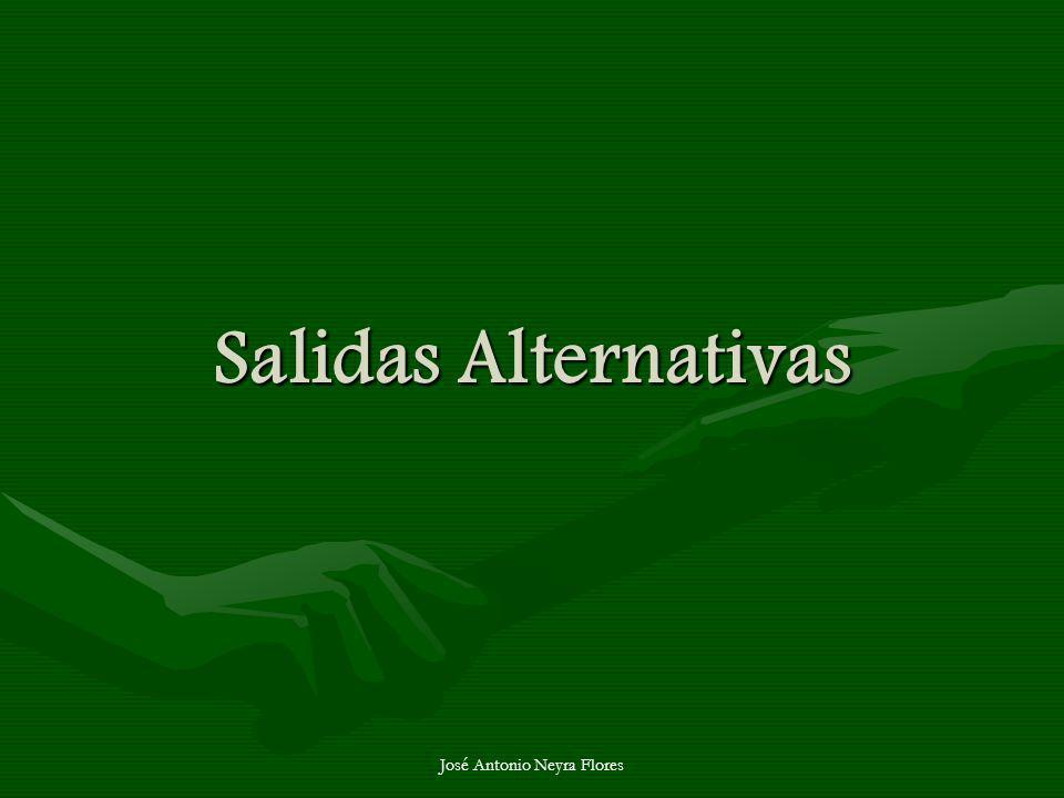 José Antonio Neyra Flores Salidas Alternativas