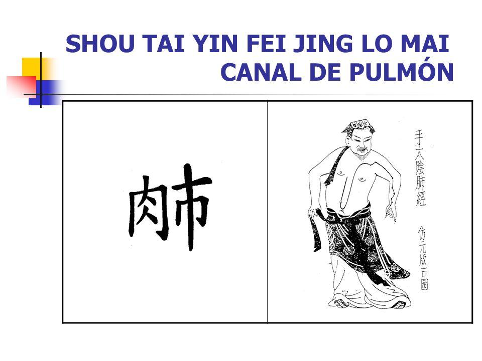 SHOU TAI YIN FEI JING LO MAI CANAL DE PULMÓN