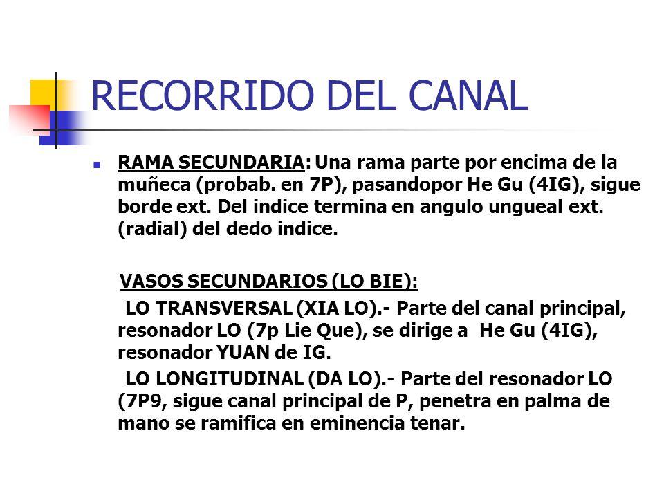 RECORRIDO DEL CANAL RAMA SECUNDARIA: Una rama parte por encima de la muñeca (probab. en 7P), pasandopor He Gu (4IG), sigue borde ext. Del indice termi