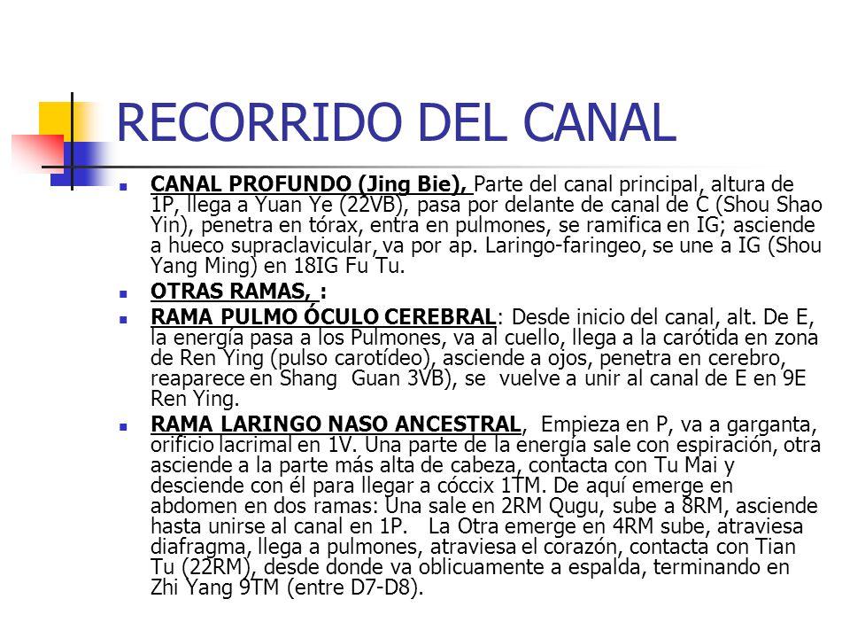 CANAL DE PULMÓN - RESONADORES 1P ZHONG FU, En el 1er.