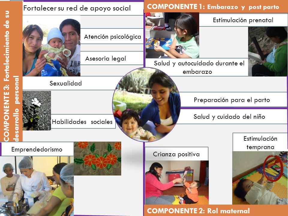 Asesoría legal Salud y autocuidado durante el embarazo Estimulación prenatal Preparación para el parto Salud y cuidado del niño Estimulación temprana