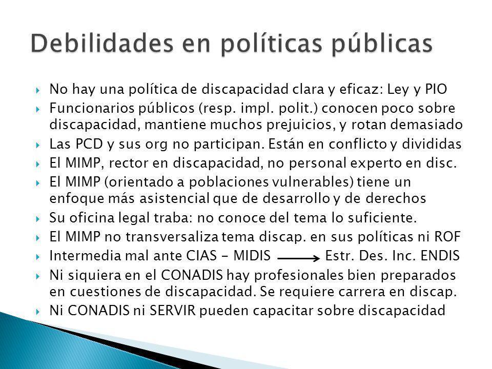 No hay una política de discapacidad clara y eficaz: Ley y PIO Funcionarios públicos (resp.