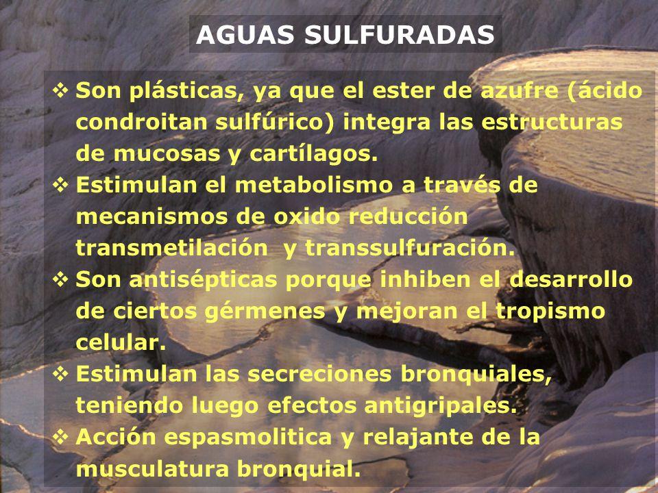 AGUAS SULFURADAS Son plásticas, ya que el ester de azufre (ácido condroitan sulfúrico) integra las estructuras de mucosas y cartílagos. Estimulan el m
