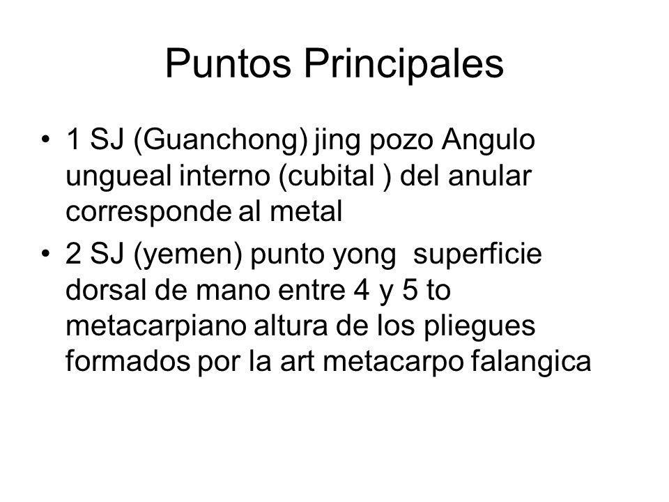 Puntos Principales 1 SJ (Guanchong) jing pozo Angulo ungueal interno (cubital ) del anular corresponde al metal 2 SJ (yemen) punto yong superficie dor