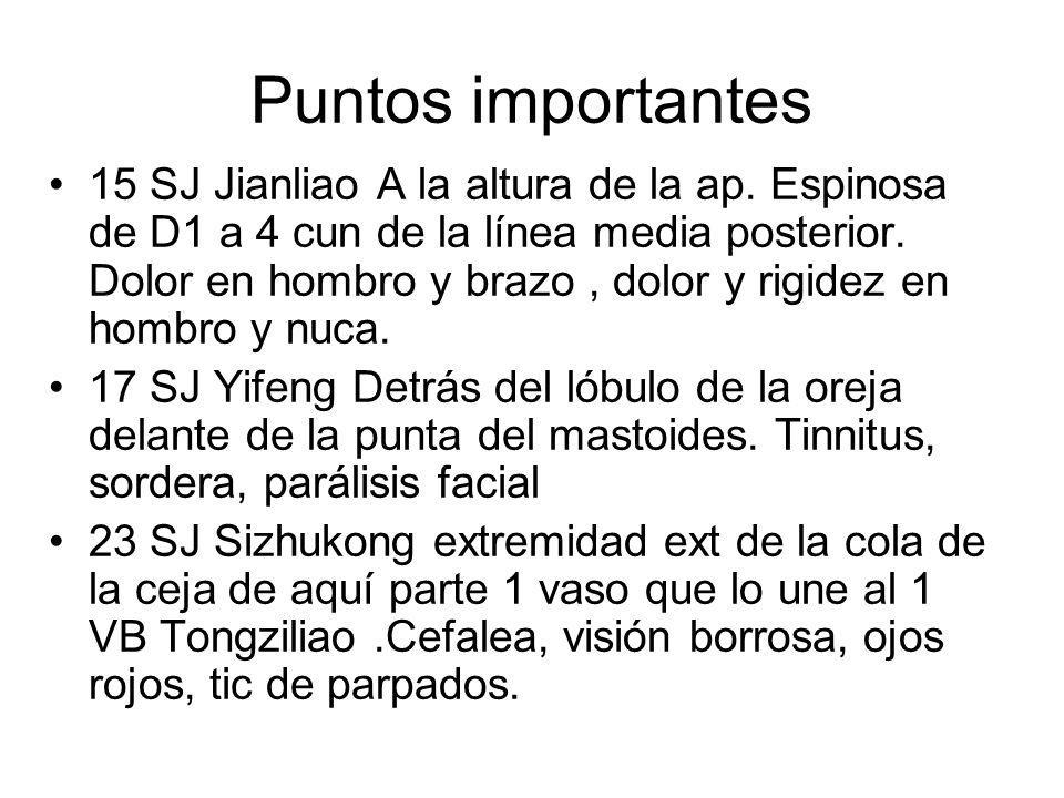 Puntos importantes 15 SJ Jianliao A la altura de la ap. Espinosa de D1 a 4 cun de la línea media posterior. Dolor en hombro y brazo, dolor y rigidez e