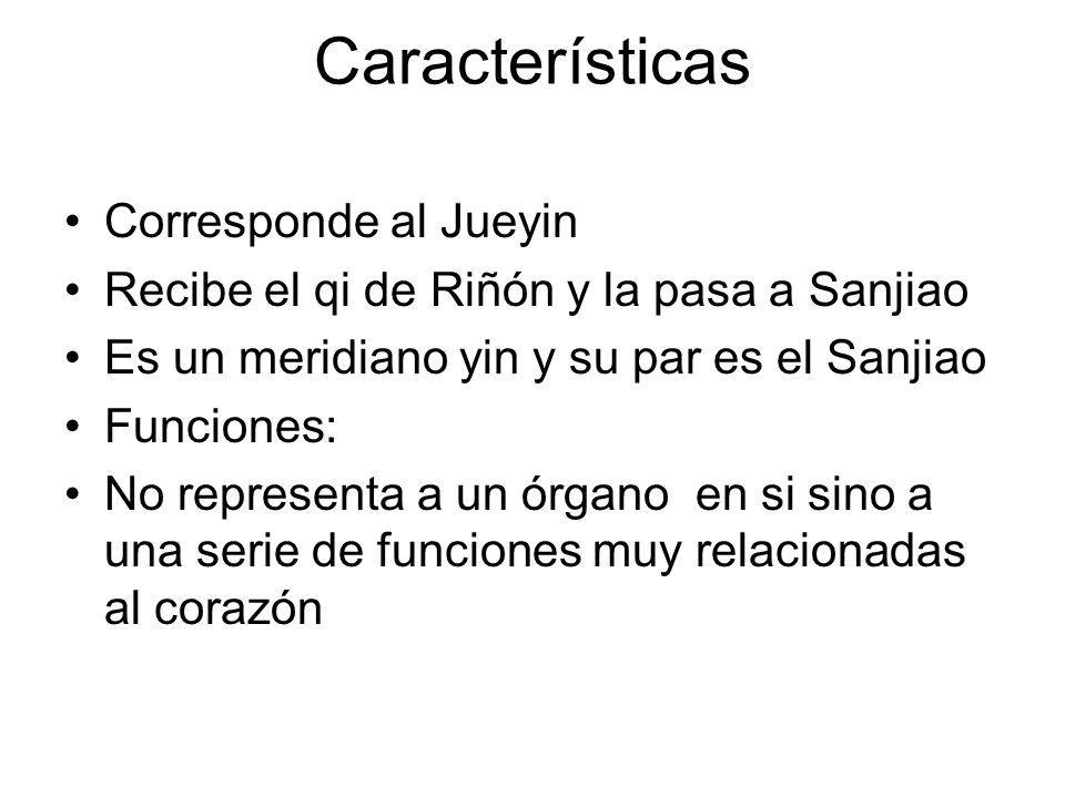 Características Corresponde al Jueyin Recibe el qi de Riñón y la pasa a Sanjiao Es un meridiano yin y su par es el Sanjiao Funciones: No representa a