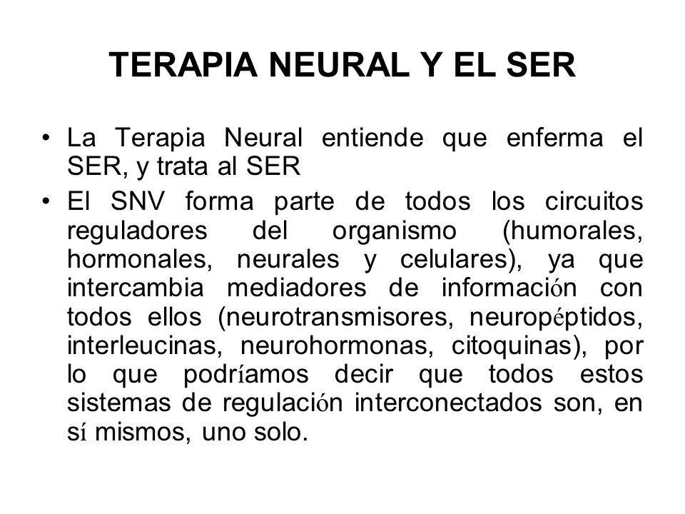TERAPIA NEURAL Y EL SER La Terapia Neural entiende que enferma el SER, y trata al SER El SNV forma parte de todos los circuitos reguladores del organi