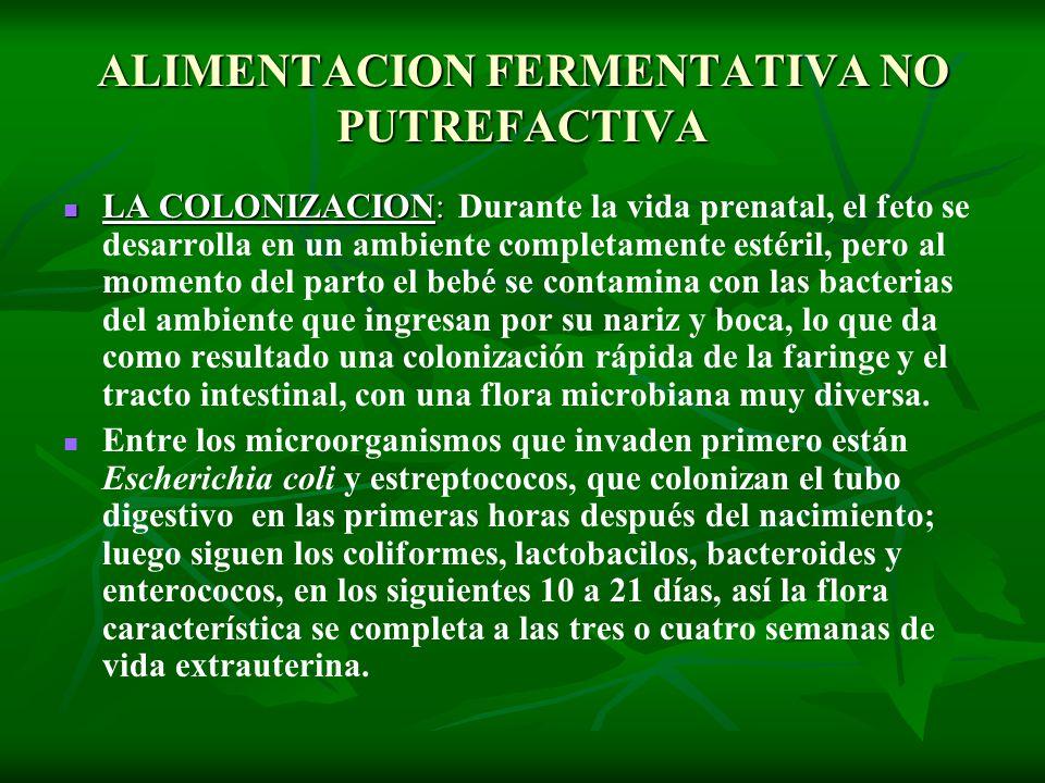 ALIMENTACION FERMENTATIVA NO PUTREFACTIVA LA COLONIZACION: LA COLONIZACION: Durante la vida prenatal, el feto se desarrolla en un ambiente completamen