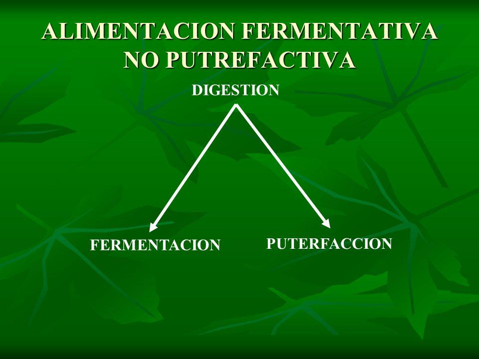 ALIMENTACION FERMENTATIVA NO PUTREFACTIVA DIGESTION FERMENTACION PUTERFACCION