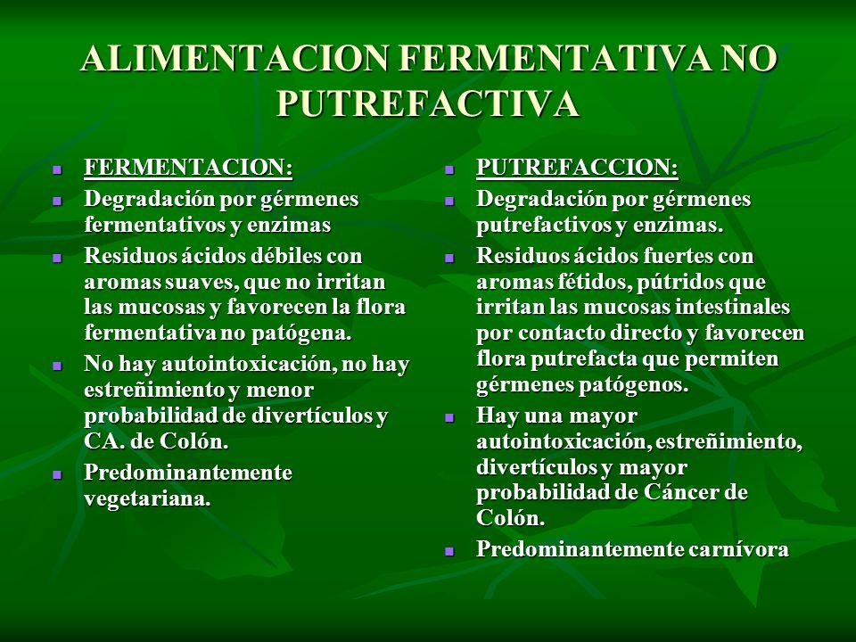 ALIMENTACION FERMENTATIVA NO PUTREFACTIVA FERMENTACION: FERMENTACION: Degradación por gérmenes fermentativos y enzimas Degradación por gérmenes fermen