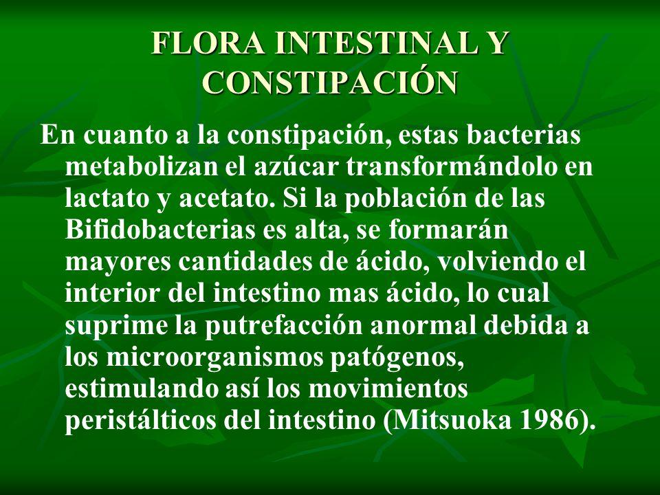 FLORA INTESTINAL Y CONSTIPACIÓN En cuanto a la constipación, estas bacterias metabolizan el azúcar transformándolo en lactato y acetato. Si la poblaci