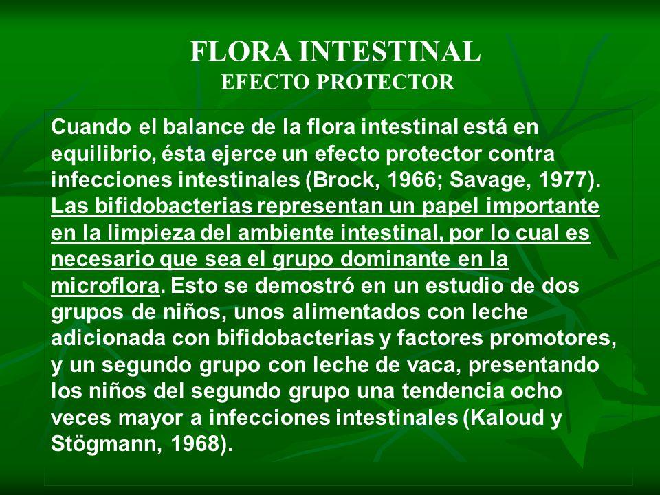 Cuando el balance de la flora intestinal está en equilibrio, ésta ejerce un efecto protector contra infecciones intestinales (Brock, 1966; Savage, 197