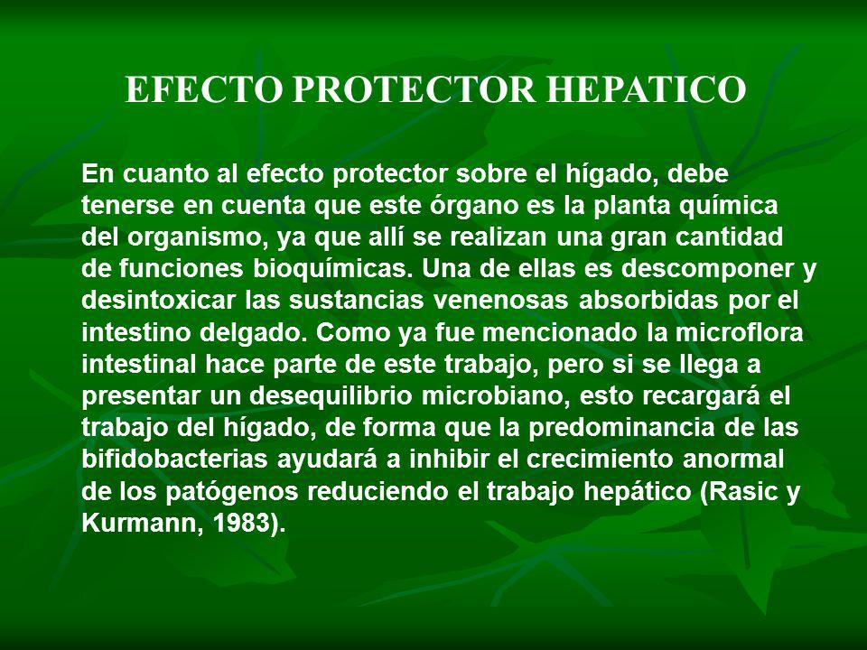 En cuanto al efecto protector sobre el hígado, debe tenerse en cuenta que este órgano es la planta química del organismo, ya que allí se realizan una